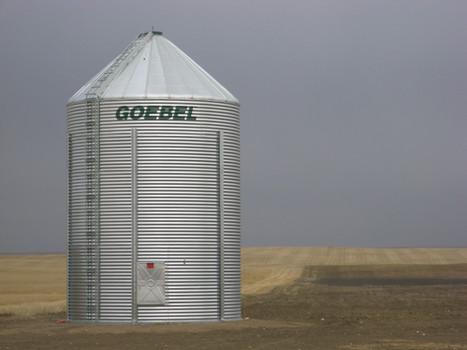Goebel 1806 5220bu.JPG