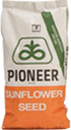 Pioneer Sunflower Seed Bag