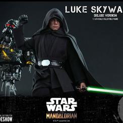 luke-skywalker-deluxe-version_star-wars_gallery_61084b3728d79.jpg