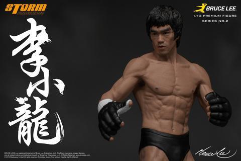 Bruce Lee The Martial Artist 2 1/12 Premium Storm STM87007
