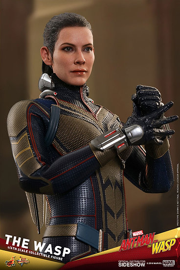 "The Wasp ""Ant Man and the Wasp"" by Hot Toys 1/6"
