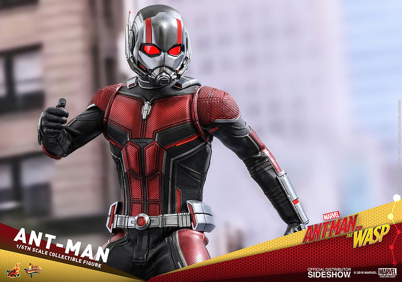 Ant Man and the Wasp by Hot Toys 1/6