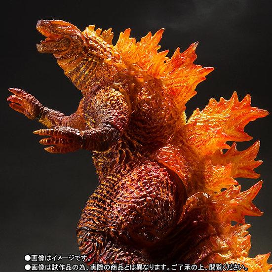 Burning Godzilla 2019 Godzilla: King of the Monsters Bandai SH MonsterArts