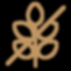 gluten_brown_web.png