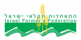 iff-logo.png