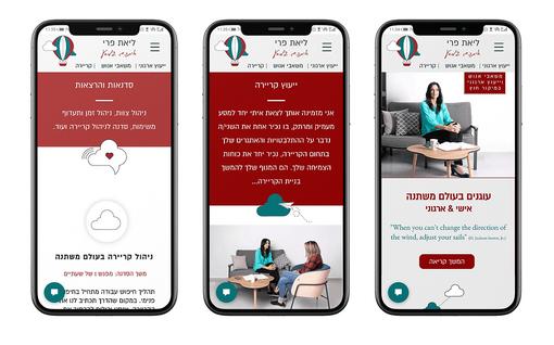בניית אתר אינטרנט ליאת פרי - מצב סלולר