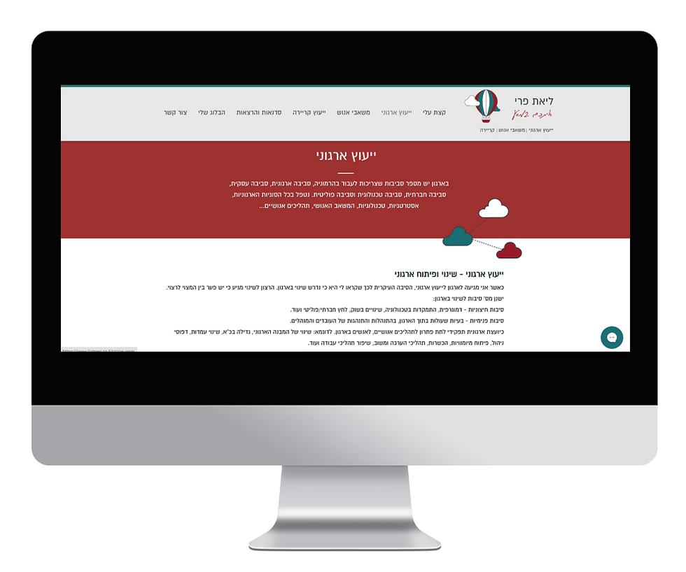 בניית אתר אינטרנט - ליאת פרי - מסך רחב