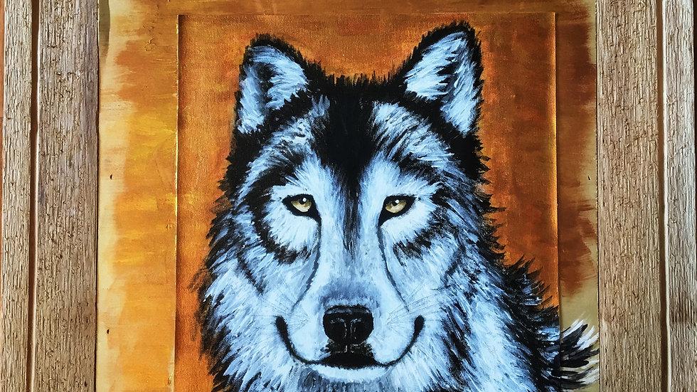 'Lobo'