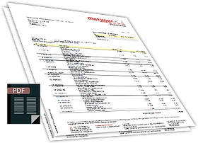 PDF-BILD.png