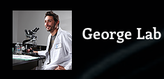 Dr. Olivier George Lab