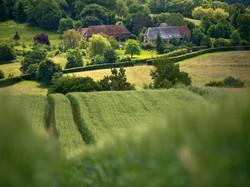 paysage normandie vallon bocage