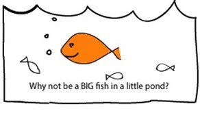 Being a Big Fish in a Small Pond