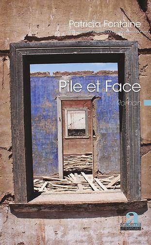 Clarisse est contrainte de fuir au Chili, à Santiago. Pour la première fois après quarante-deux ans d'exil, Marta retourne à Santiago. Au cœur de l'été austral, elles découvriront que celui qui les réunit, au seizième étage, sur le toit d'un des immeubles massifs de la capitale, est  « La Fouine brune ». De quel ennemi est-il question ? Comment vont-elles se retrouver à déterrer un pan, toujours à vif, de l'histoire récente du Chili, le golpe du 11 septembre 1973 ?