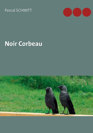 Noir corbeau