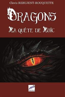 Dragons : La quête de Loïc