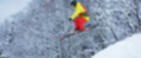 プロのスキーヤー