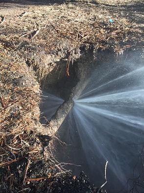 Water Emerg. Pic 1.JPG