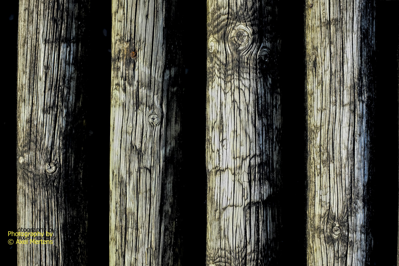 Old logs
