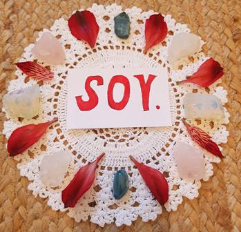 S O Y
