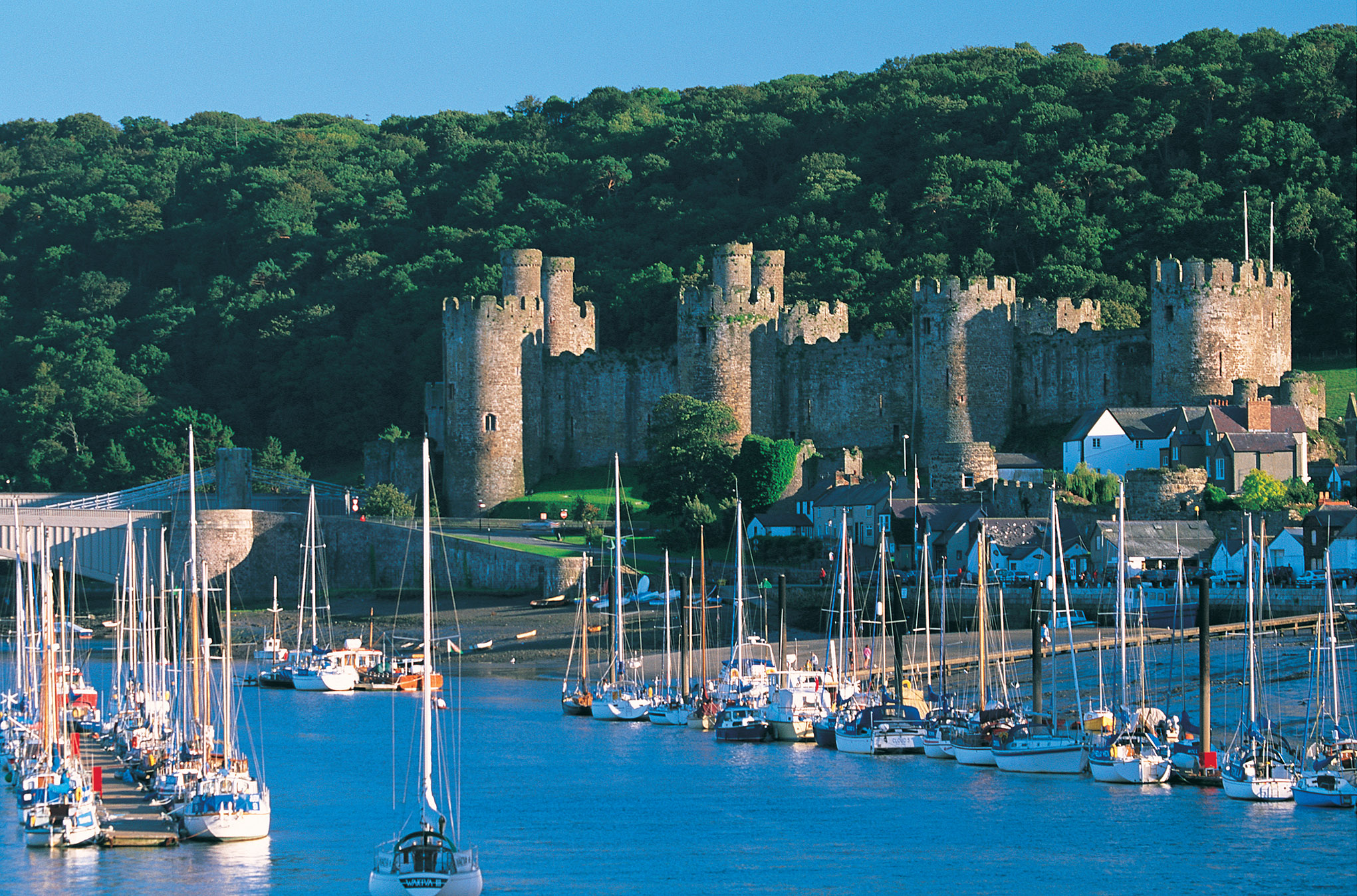 CONWY1