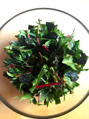 Dandelion & Nori seaweed Salad