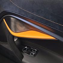 Leather and Alcantara intero