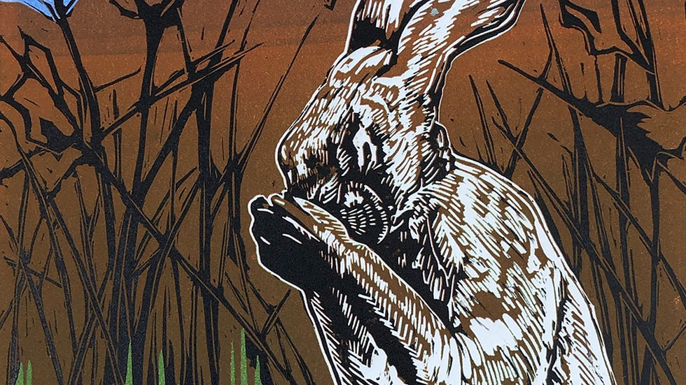 Hare in your hands