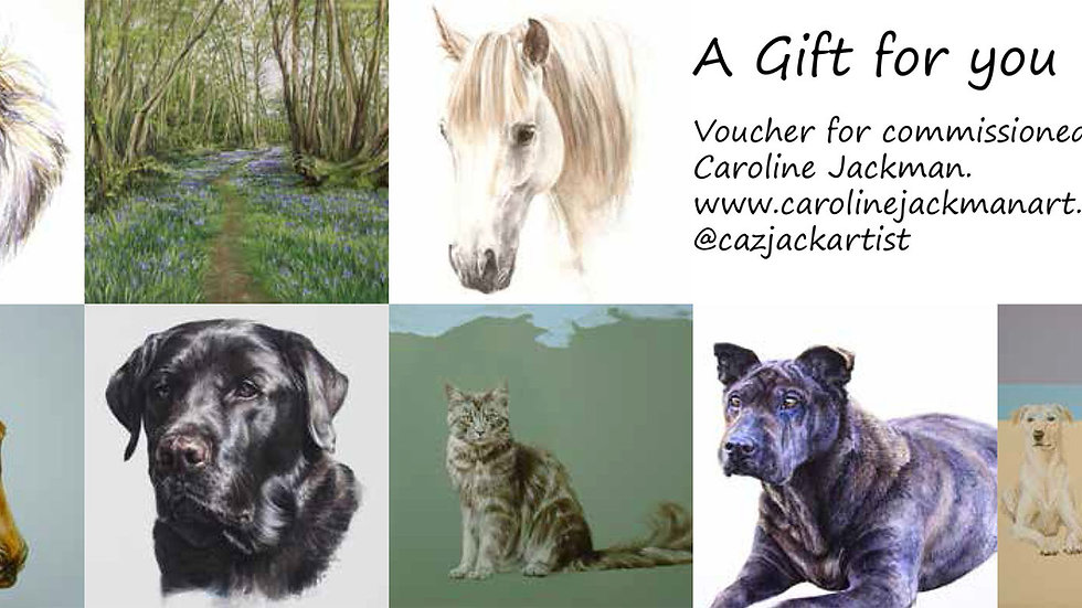 Gift voucher for commissioned work by Caroline Jackman