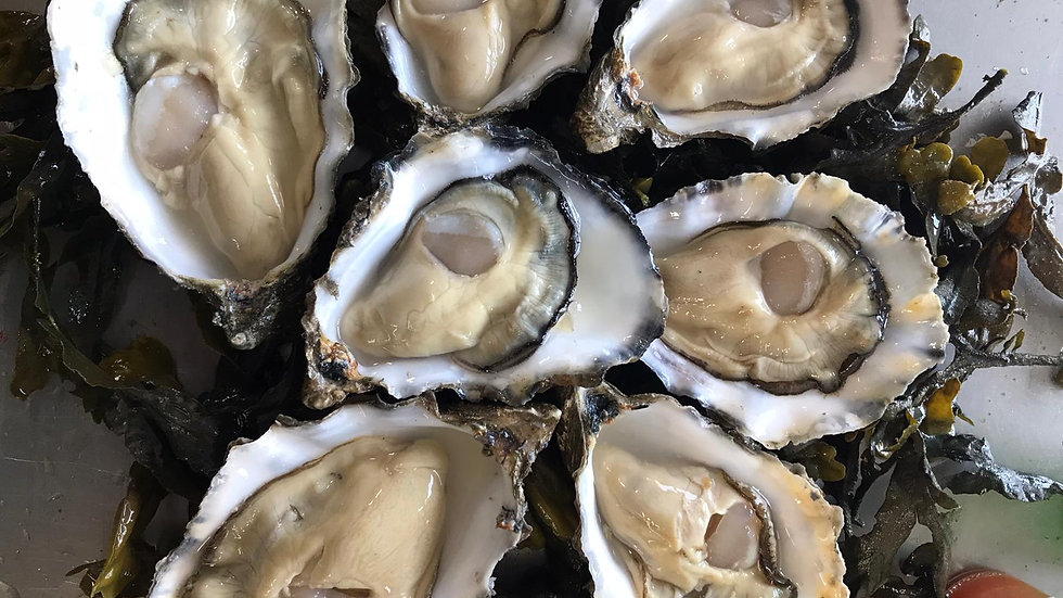 Rossmore Oysters - One Dozen
