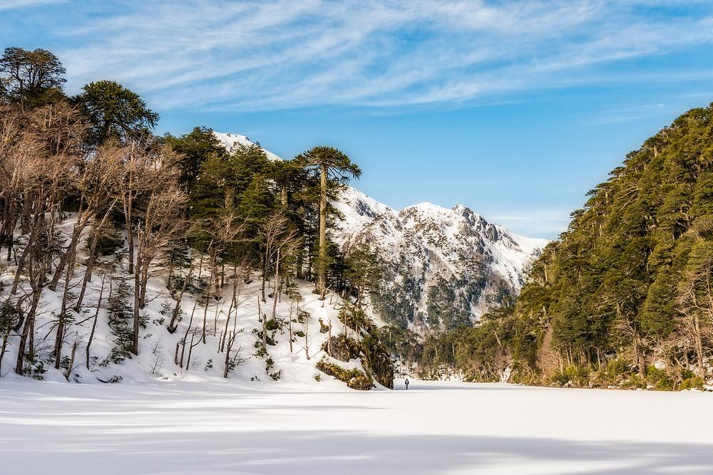 Lago Toro
