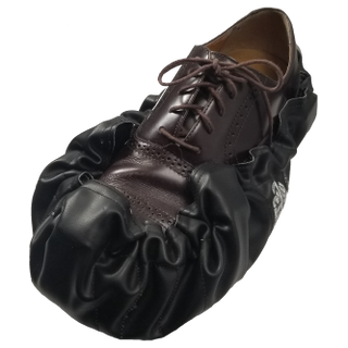 shoe4png333.png
