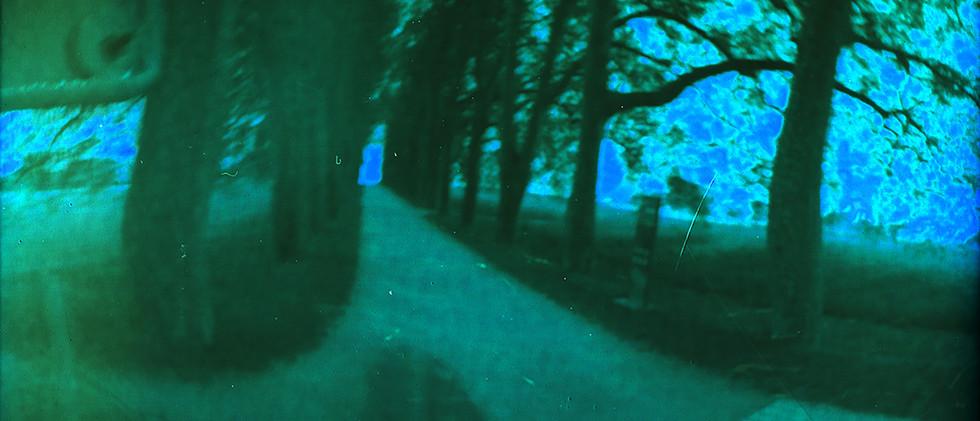 Chemin du lac