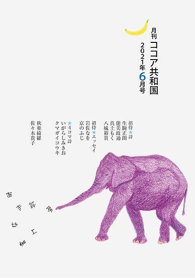 【年間購読】月刊ココア共和国☆2021年6月号~(12冊)