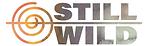SW line logo.png