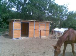 vox caballos.jpg