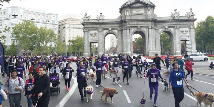 Carrera perroton 2016 Madrid