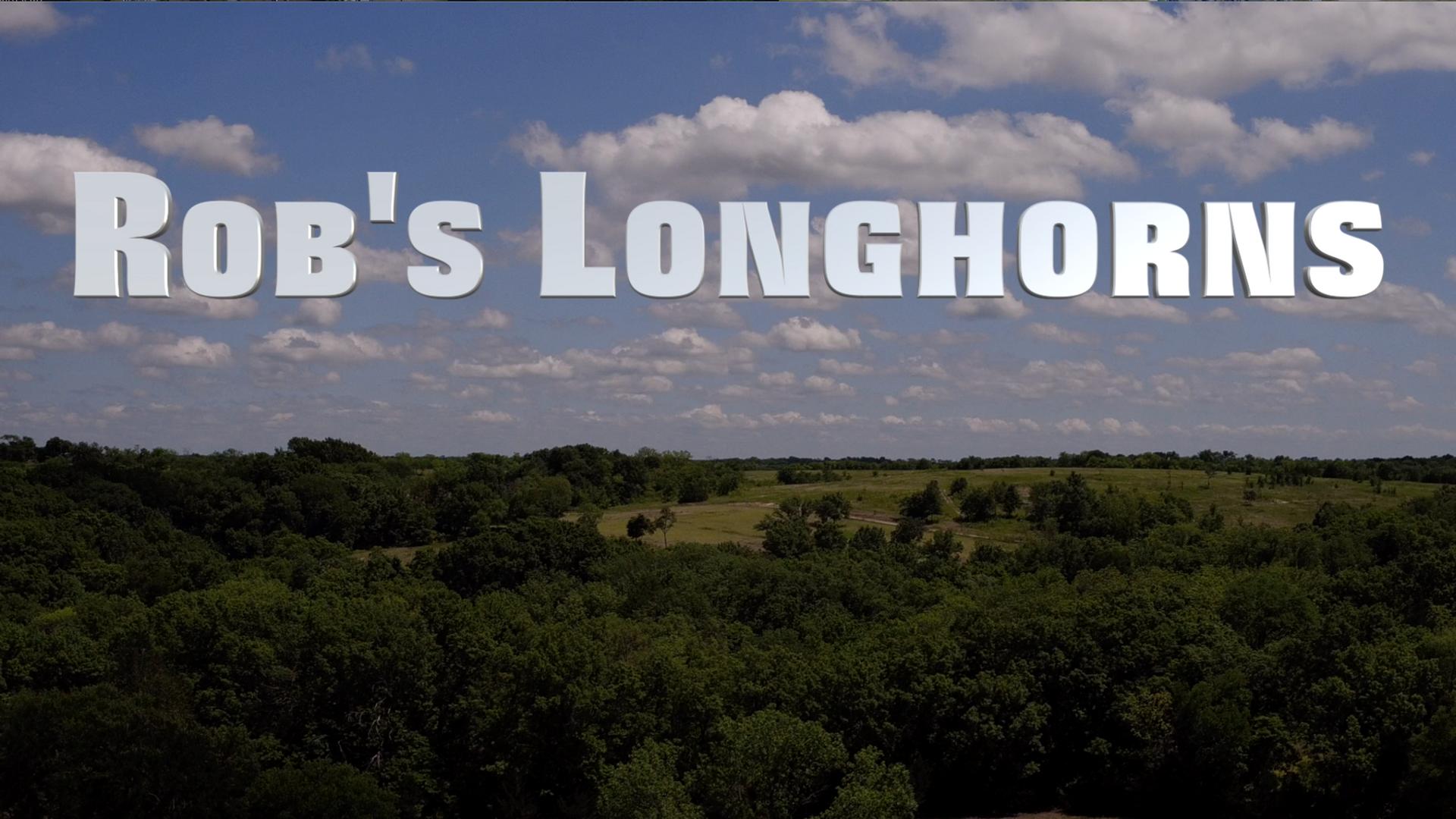 Rob's Longhorns
