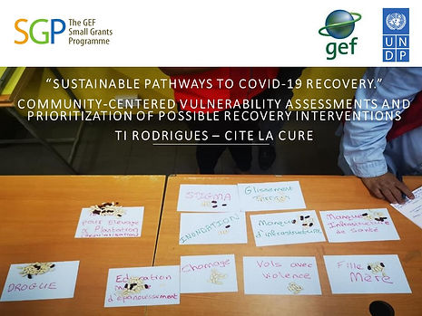 Sustainable Pathways COVID19 Recovery.jp