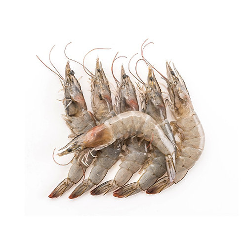 40-50 Small size Head-on Shrimp 4LB/Bag