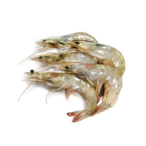 30-40 Medium Size Head-On Shrimp  4 LB/Bag