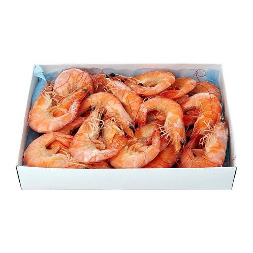 Cooked Head-on Shrimp 13-15,1 lb