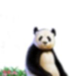 Double Happiness Panda Character.png