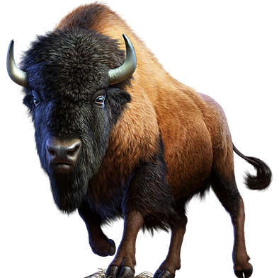 American Bison character.png