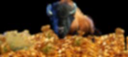 Bison Bucks Character.png