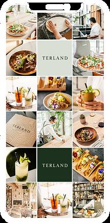Terland_feedplanner.png