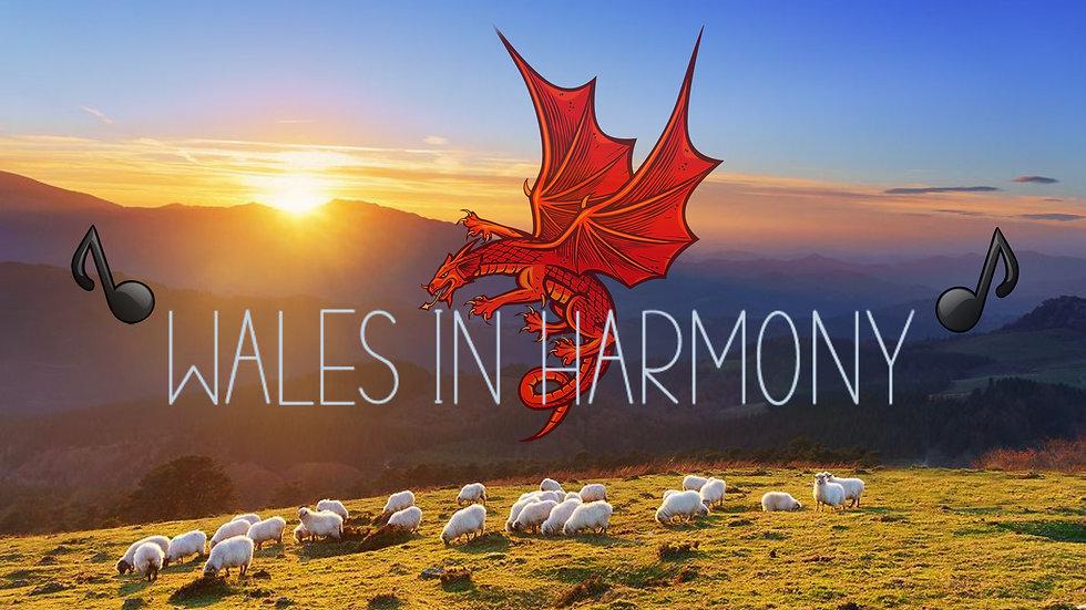wales in harmony(dragon).jpg
