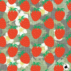 Fruit Collection Strawberry Basket