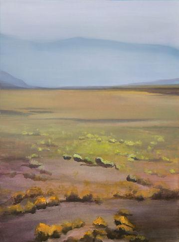Desert I