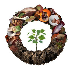 Food Waste to Compost Circular with smal