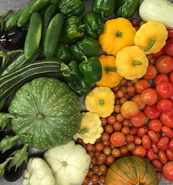 Drovers%20Rest%20Organic%20Vegetables_ed